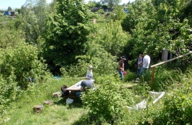 The wonderful growing space in Redland comprises a mix of orchards, allotments and a green oasis in our neighbourhood